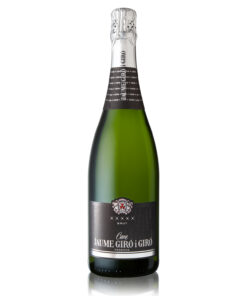Cava Champagner in Bio Qualität von einem Familienunternehmen in Spanien