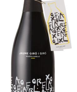 bottle Flasche cava Schaumwein flaschengärung